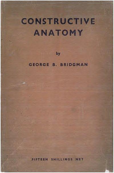 constructiveanatomy