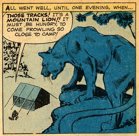 ditko_the-teddy-bear_amazing-adventures-v01-n03_August 1961