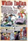 frank-frazetta_white-indian-n11 p01