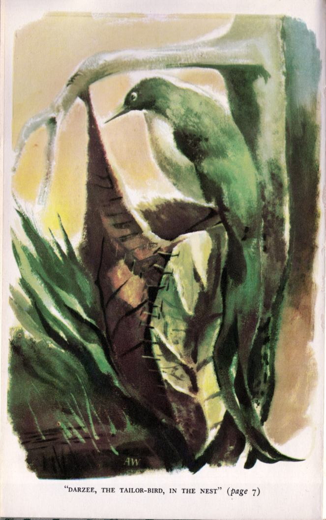 aldren-watson_the-jungle-books-v2_doubleday-1948_frontispiece