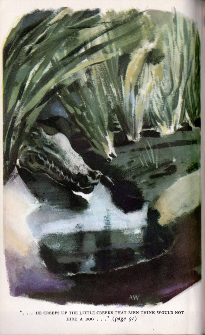 aldren-watson_the-jungle-books-v2_doubleday-1948_lfp107