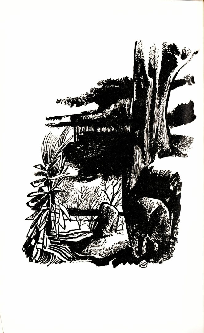 aldren-watson_the-jungle-books-v2_doubleday-1948_p162